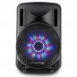 "Preview: FENTON ""FT10LED"" Mobiles Akku Soundsystem mit Funkmikrofon, USB, Bluetooth & IR-Fernbedienung"
